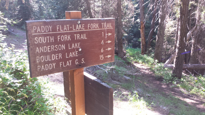 This is the junction of the East Fork Lake Fork Trail and the Anderson Lake Trail.