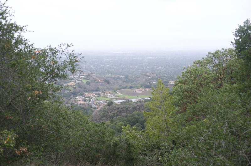 Even on cloudy days, you can see views of the Bay Area from the upper stretches of the trail.