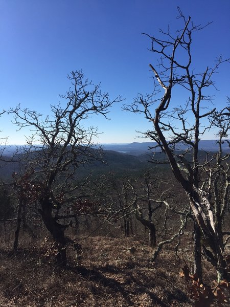 Southwestern Arkansas is leafless in winter. Mena Lake can be seen in the distance.