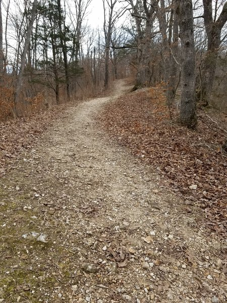 Heading south toward the south parking lot, there's a gentle climb up to the top of a hill. Once there, the trail will follow a gravel road for roughly 1/4 mile.