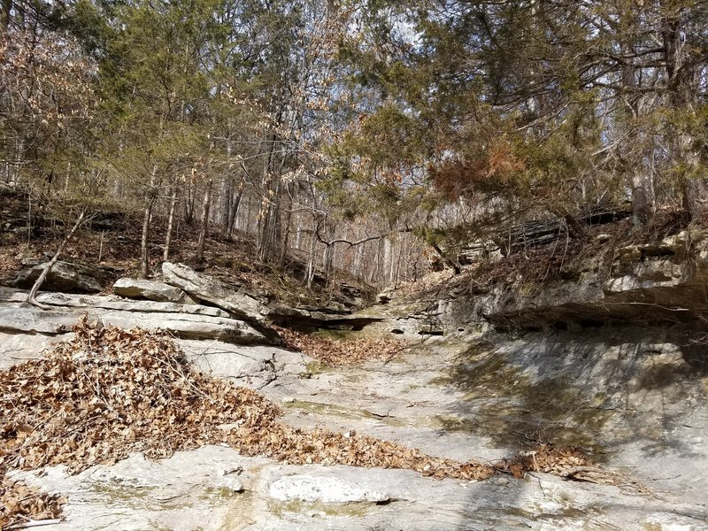 This is another example of the limestone creek bed by Turkey Creek.