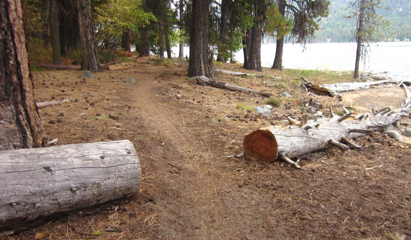 The trail is pretty well buffed out because of the mountain bike use and Ponderosa State Park trail crew.