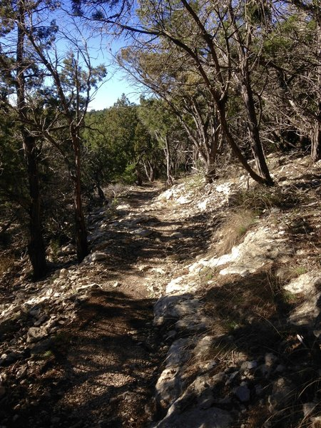 Expect to pass through this type of terrain along the Boot Trail.