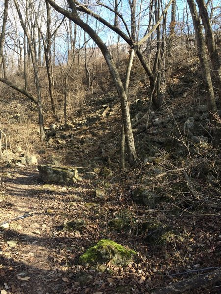 The path at Gnome's Garden on the Rozarks Trail is rocky and often covered in leaves.