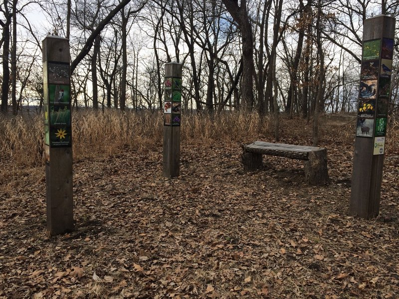 At the trail's endpoint, enjoy the totems showing the area's plant and animal wildlife.