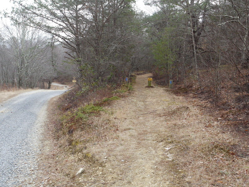 The start of the Old Hotel Trail is located on Wiggings Spring Road near the Mt. Pleasant Parking Area.