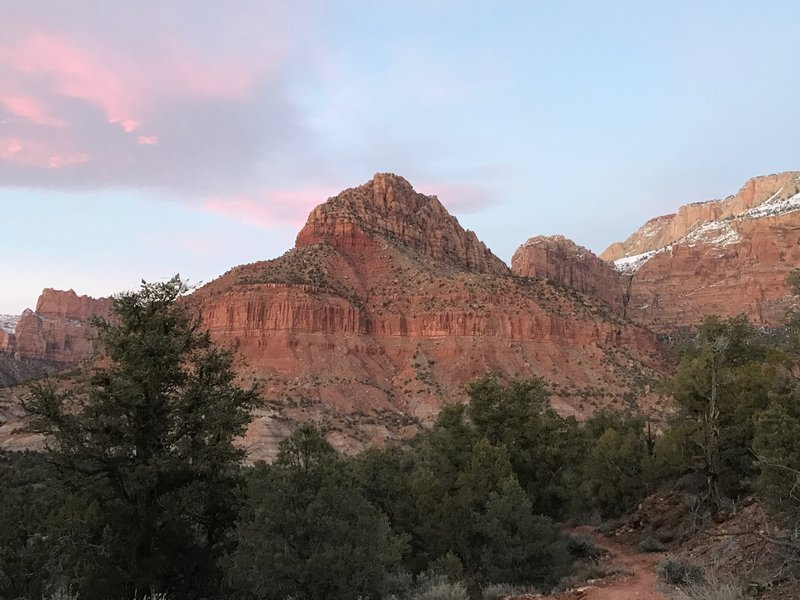 Red Butte stands prominently on the Chinle Trail, Zion National Park.