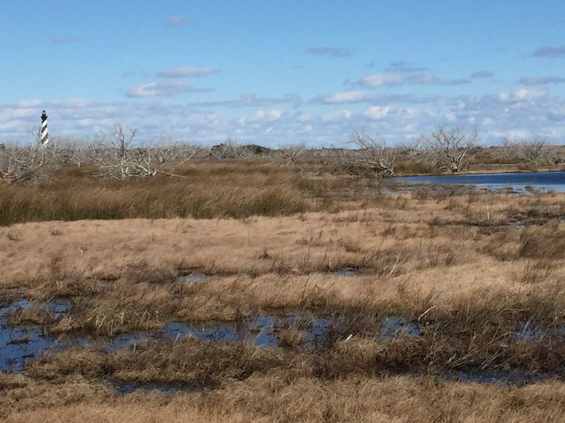 The views start right at the beginning of the Cape Hatteras Point Loop Trail.