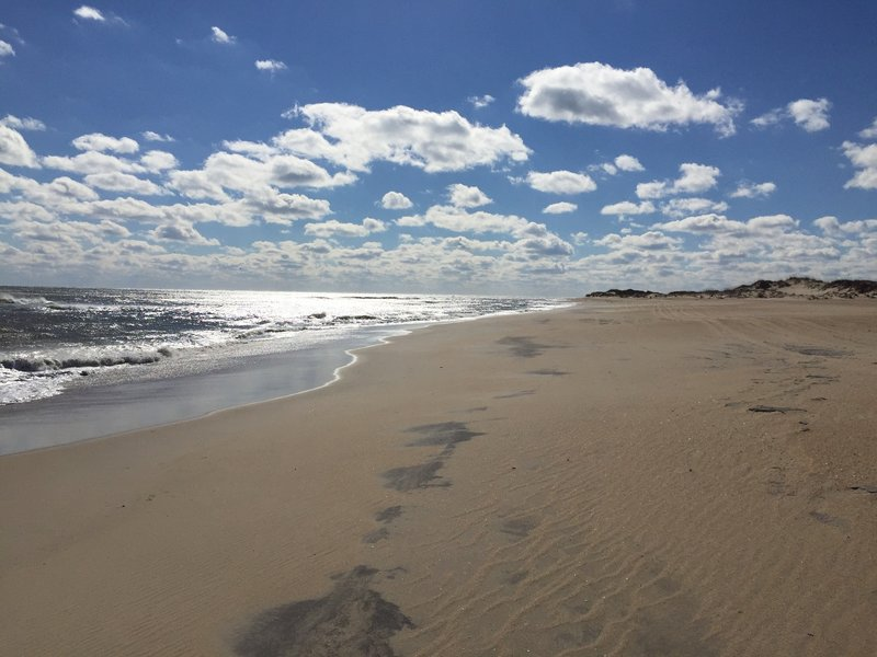 Sun, sand, and surf await you on the Cape Hatteras Loop Trail.