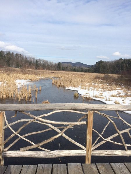 This beautiful boardwalk ushers visitors across the lower end of Rush Pond.
