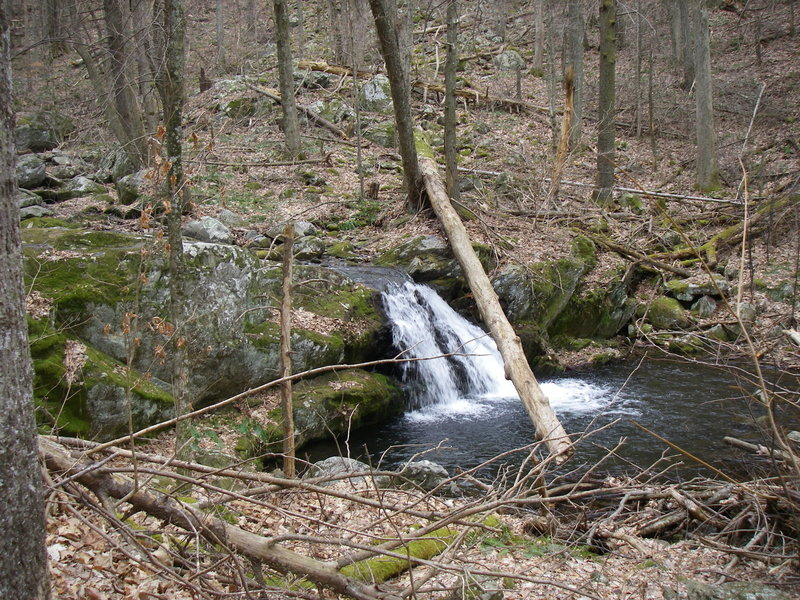This is just one of many cascades down Cornelius Creek.