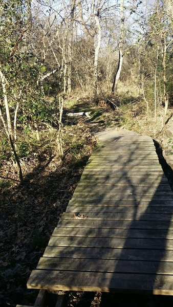 This handy boardwalk keeps you dry as you pass over a wet area on the Creek Trail.