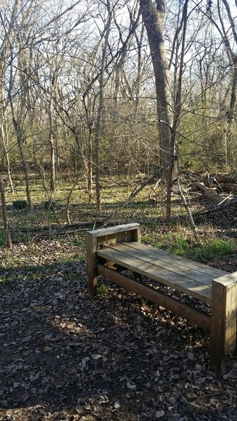 Take a seat on this nice bench to further enjoy your surroundings on the Creek Trail.