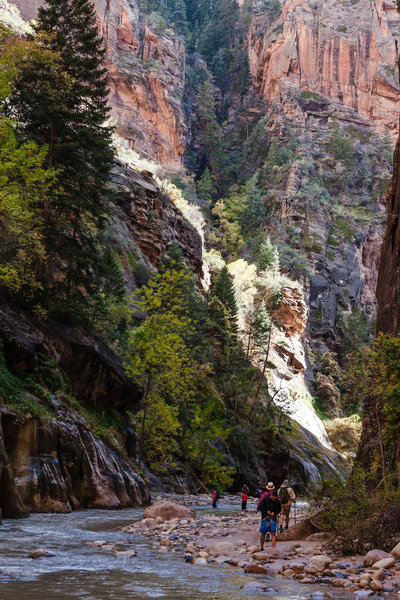 The Narrows is a must-do hike in Zion.