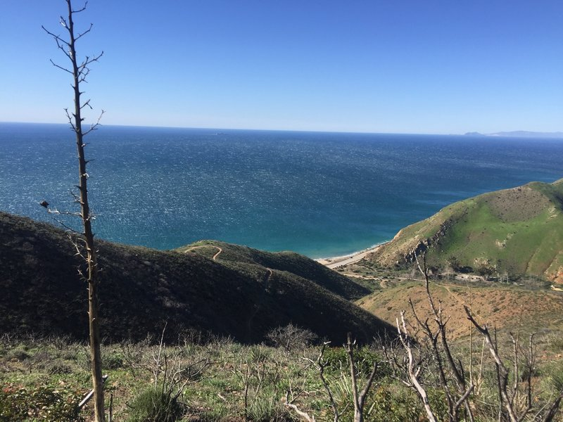 A gorgeous day and spectacular views make for a wonderful time on the Ray Miller / Backbone Trail!