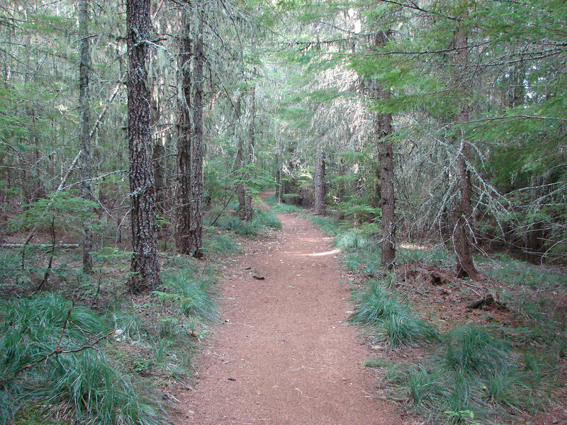 The Southshore Trail is well manicured near Oak Fork Campground. Photo by Yunkette.