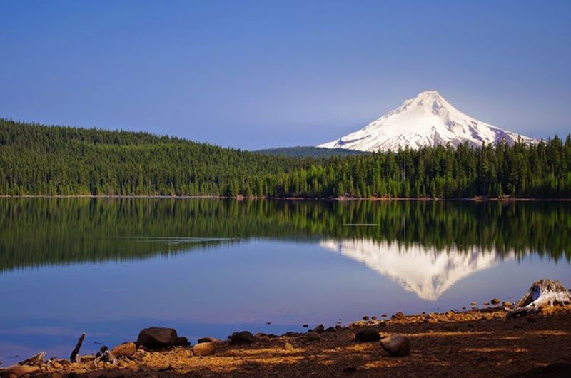 Mt. Hood stands prominently in the distance from the Shoreline Trail. Photo by Gene Blick.