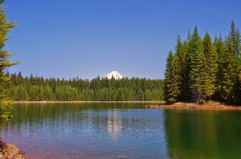 Looking north on the Timothy Lake Trail, enjoy beautiful views of the North Arm and Mt. Hood. Photo by Gene Blick.