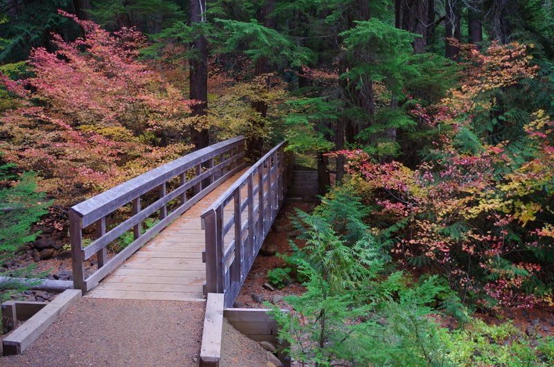This sturdy bridge guides your passage over Dinger Creek on the Timothy Lake Trail. Photo by Gene Blick.