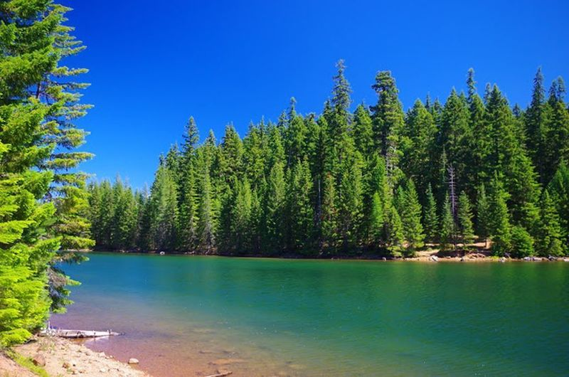 The lake water in the North Arm part of Timothy Lake can appear bluish green. Photo by Gene Blick.