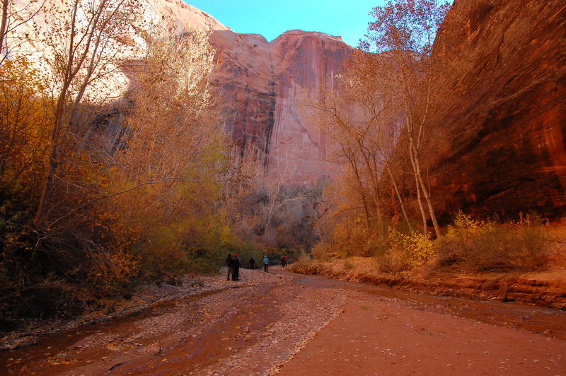 Fall is a gorgeous time to enjoy Coyote Gulch.