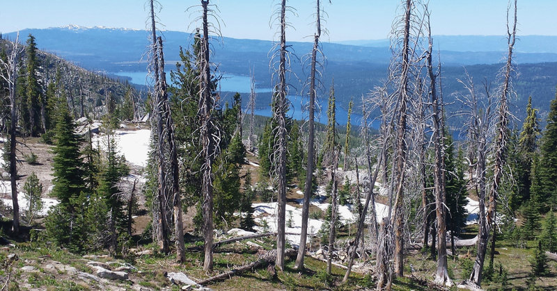 Payette Lake glimmers brightly in the distance from this view along the Crestline Trail.