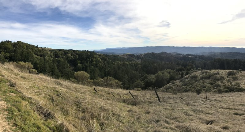 The Ancient Oaks Trail emerges from the woods with views of Russian Ridge Preserve and the surrounding mountains spreading out before you.