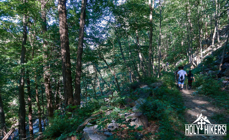 Our group makes their way through dense hardwood forests on the way to Popolopen Torne.