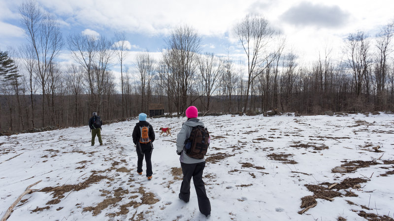 Our group approaches a shelter near the 4-H camp in Rutland.