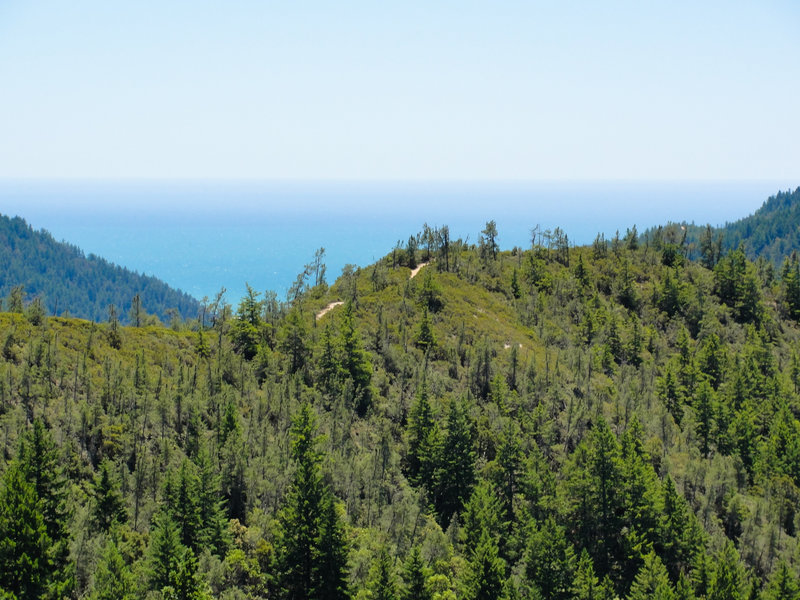 Look back from Hihn Hammond Road to experience great views of the McCrary Ridge Trail and the Pacific Ocean.