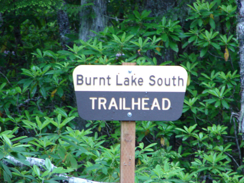The road to Burnt Lake South Trailhead is difficult and best accessed by high-clearance vehicles. Photo by Yunkette.