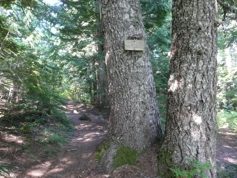 Keep an eye out for this trail sign to Devil's Meadow along the Burnt Lake Trail South.