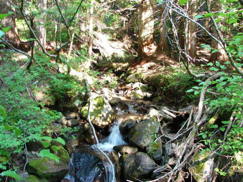 Enjoy this creek along the Burnt Lake Trail South. Photo by Yunkette.