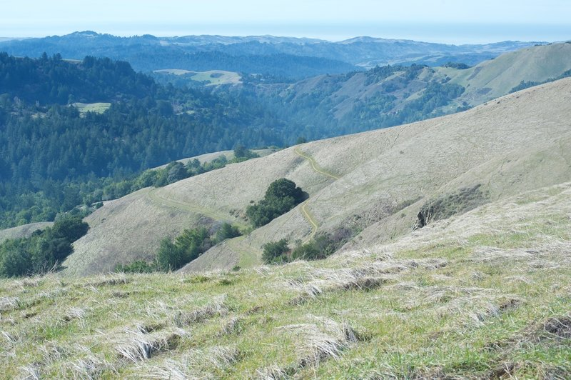 From the Ridge Trail, you can see the Hawk Trail descending the hillside and the Alder Spring below that.