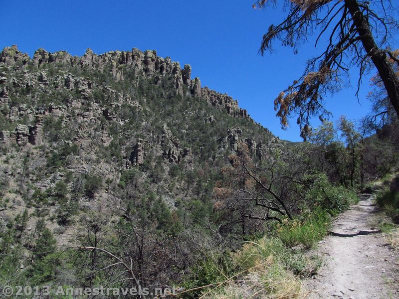 Views of spires await along the Upper Rhyolite Trail.