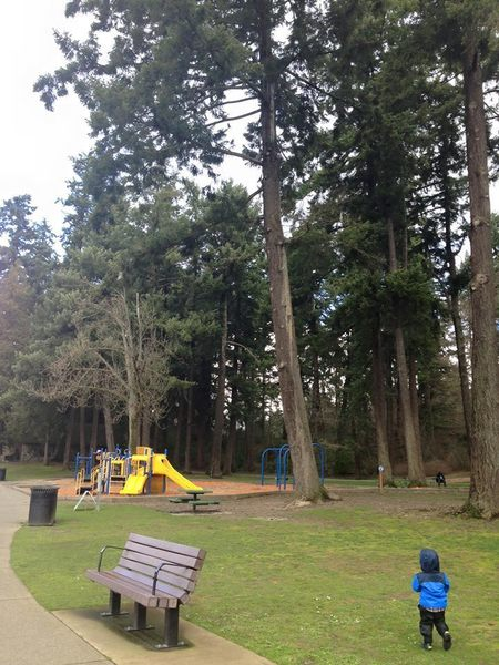 A lakeside playground awaits small children under huge trees.