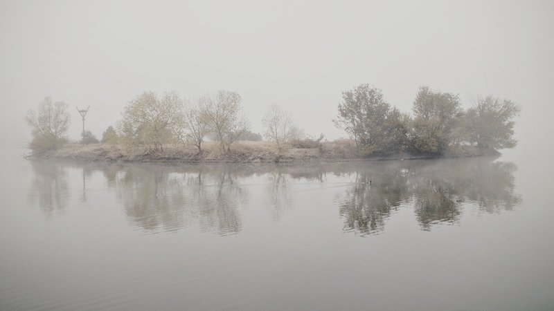 Morning fog rolls over Cooper Island at Sloan's Lake Park.