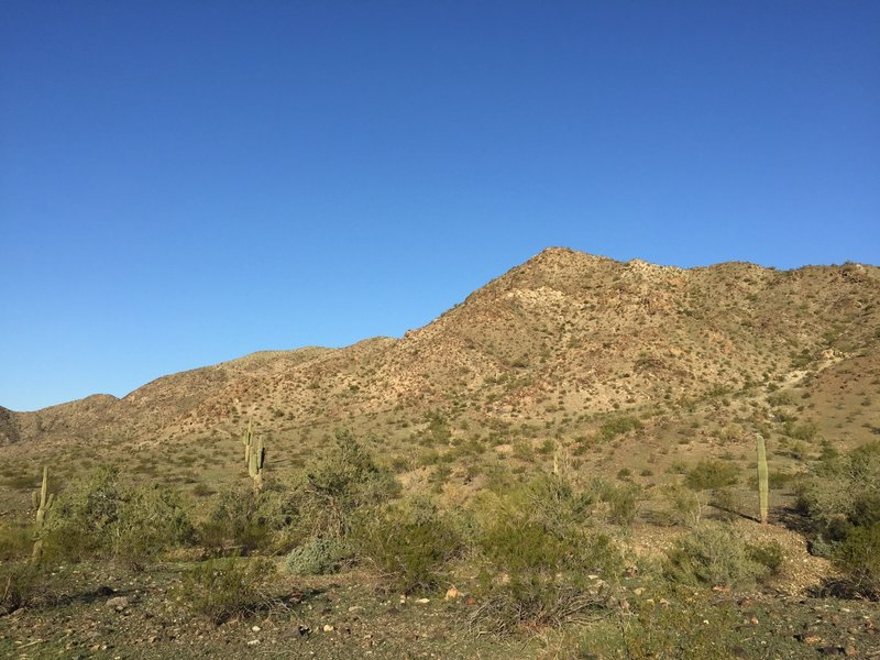 Enjoy this view from the common portion of the Pyramid and Bursera trails.