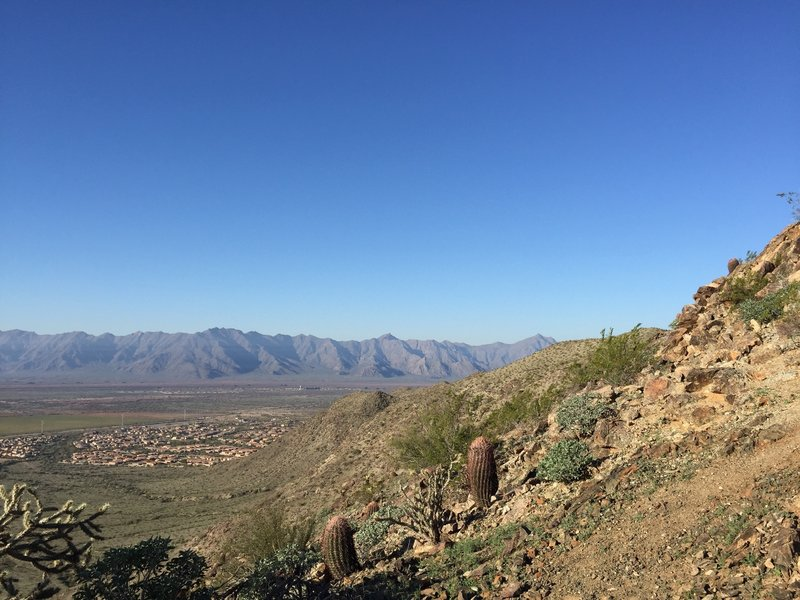 Hop on the Bursera Trail for a gorgeous look at the Estrella Mountains.