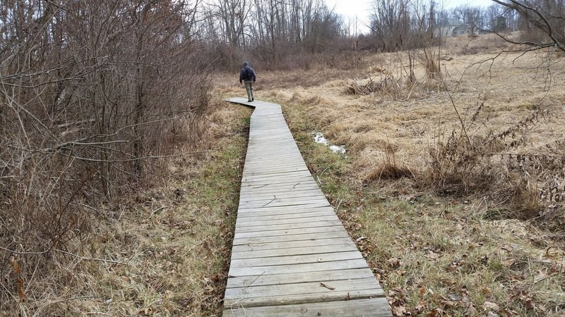 A short boardwalk guides you along this section of the Hathaway Preserve at Ross Run.