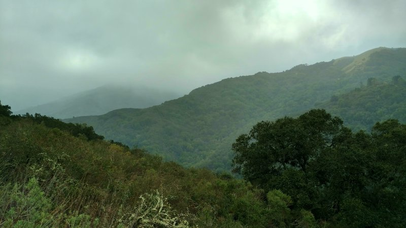 The Santa Cruz Mountains poke through the clouds on a stormy winter day along the Wood Road Trail.
