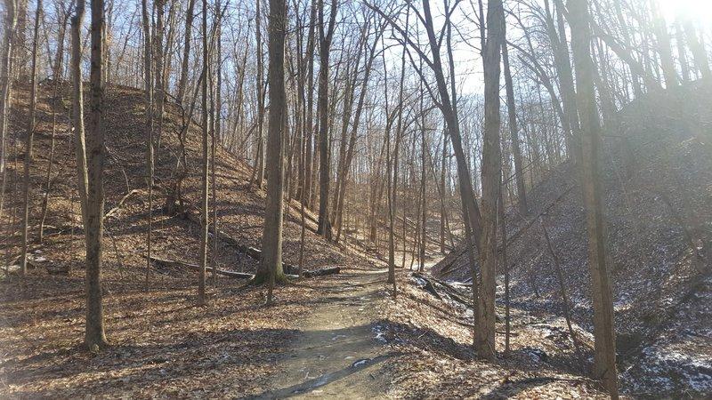 The Spring Hollow Trail passes through this narrow corridor.