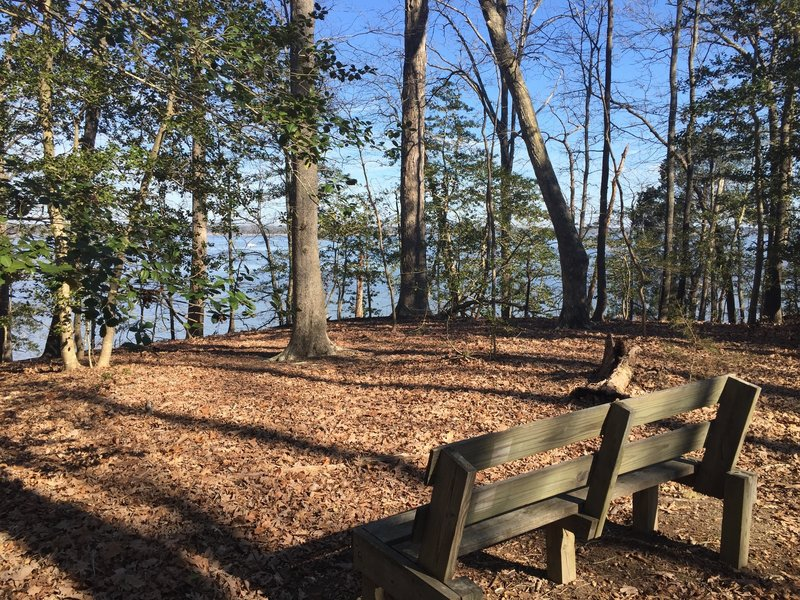 A nice bench offers pleasant views of the York River near the end of the Majestic Oak Trail.