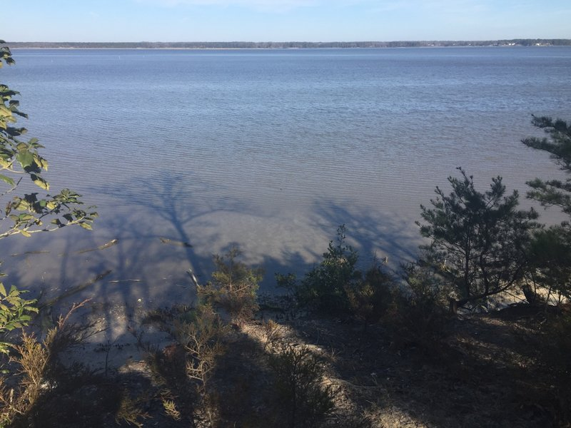 Tree shadows fall on the York River at the end of the Powhatan Forks Trail East Fork.