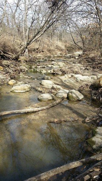 A local creek flows through Arbor Hills Nature Preserve.
