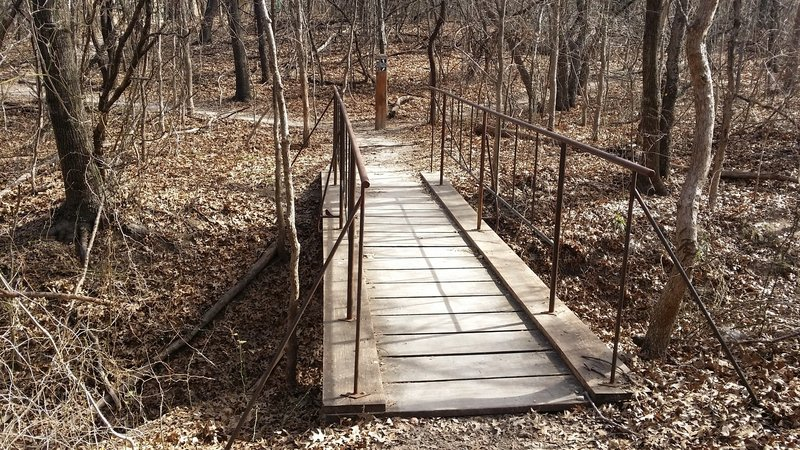 A sturdy bridge provides passage over this drainage in Arbor Hills Nature Preserve.