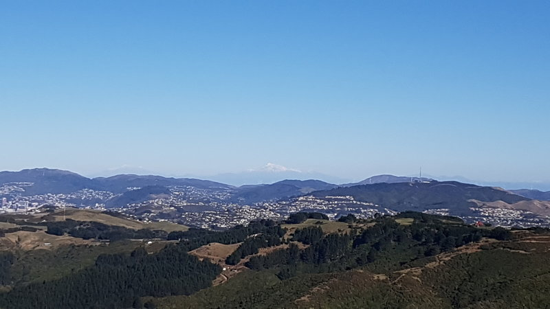 View from Belmont Trig looking to Mount Kaukau.