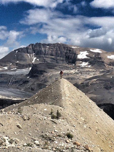 Summiting on the Iceline Trail.