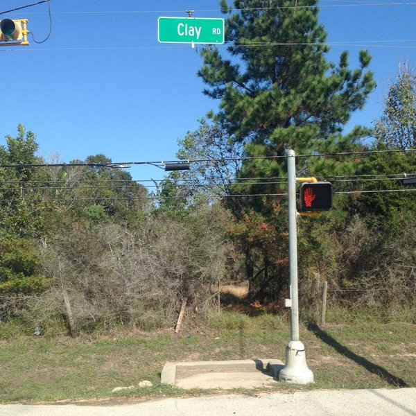 The southern entrance to Wise Fox Trace is at Clay Road and War Memorial Street.