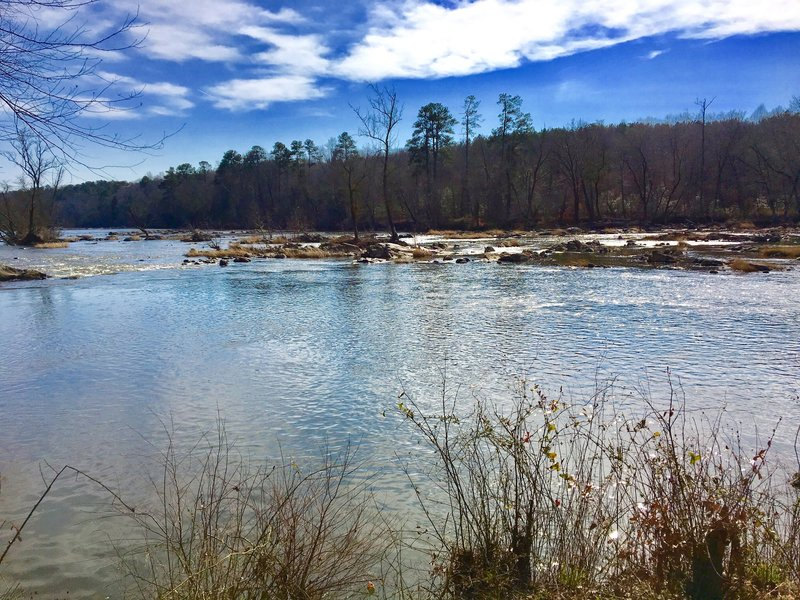 The Lower Haw River shines in the sun as it meanders by the trail.